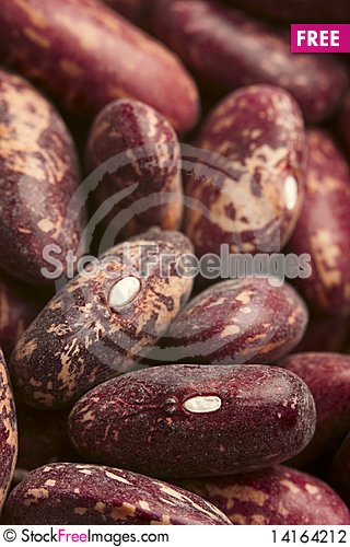 Free Red Haricot Stock Photography - 14164212