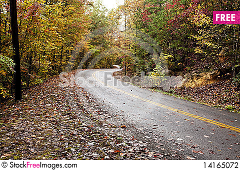 Free Road In Autumn Forest Stock Photography - 14165072