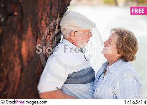 Free Happy Senior Couple In The Park Stock Images - 14165414