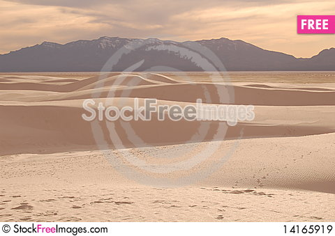 Free White Sands 8126 Royalty Free Stock Images - 14165919