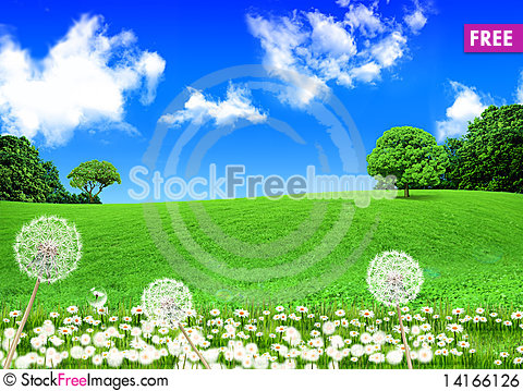 Free Green Field Royalty Free Stock Image - 14166126