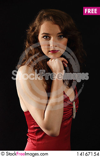 Free Portrait Of The Woman Stock Images - 14167154