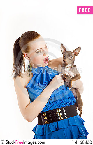 Free Young Beautiful Woman Holding Toy Terrier Dog Stock Photo - 14168460