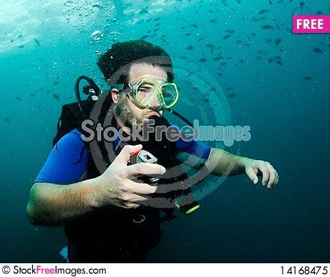 Free Scuba Diver Royalty Free Stock Photo - 14168475