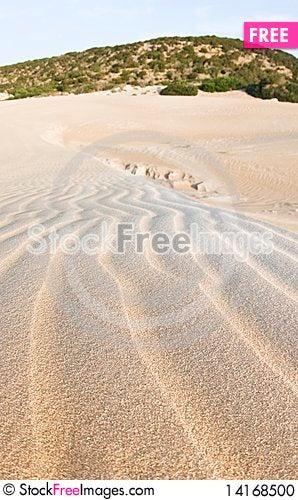 Free Sand Dunes Stock Photo - 14168500