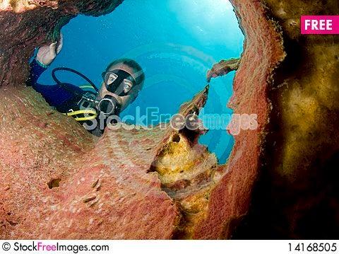 Free Scuba Diver Looking Down Barrel Sponge Royalty Free Stock Photo - 14168505