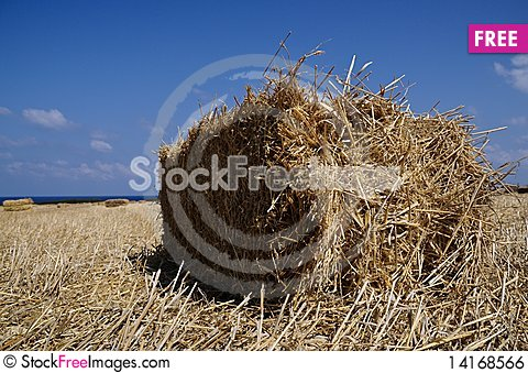 Free Hay Stack Royalty Free Stock Image - 14168566