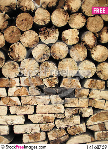 Free Harvested Logs Royalty Free Stock Images - 14168759