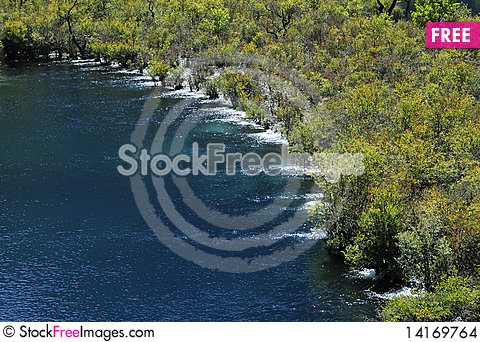 Free Grove On River Stock Images - 14169764