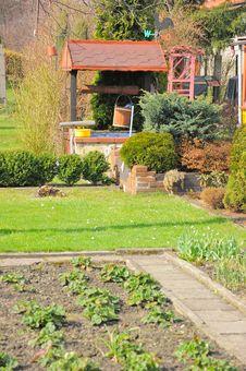 Free Garden Stock Photography - 14161412