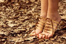 Barefooted Tender Woman S Feet. Footwear Concept