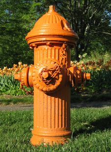 Free Fire Hydrant Stock Photography - 14166132