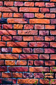 Free Wall Stock Photography - 14166982
