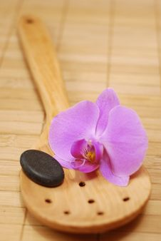 Spoon With The Stone And The Orchid Stock Photography