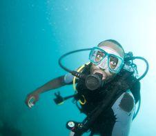 Free Scuba Diver Stock Images - 14168364