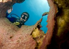 Scuba Diver Looking Down Barrel Sponge