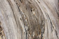 Free Old Wood Stock Images - 14169214
