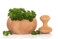 Free Parsley Herb Leaves Stock Photo - 14169680