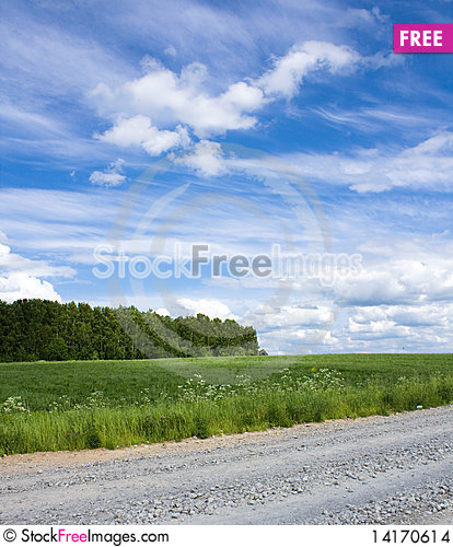 Free Summer Landscape, Russia Stock Images - 14170614