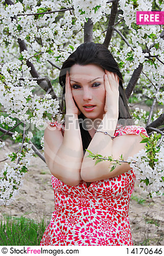 Free The Beautiful Girl In A Garden Royalty Free Stock Image - 14170646
