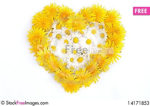 Free Heart Symbol Stock Photos - 14171853