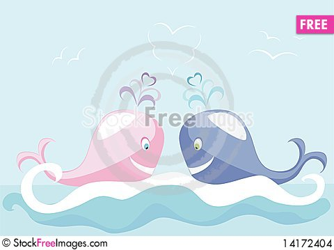 Free Two Big Whales Stock Images - 14172404