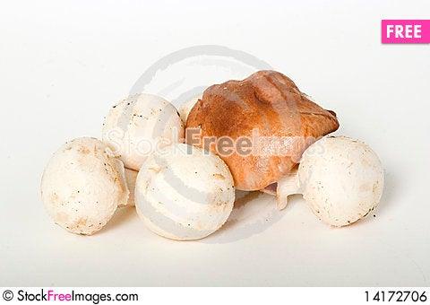 Free Champignon And Shiitake Mushrooms Royalty Free Stock Image - 14172706
