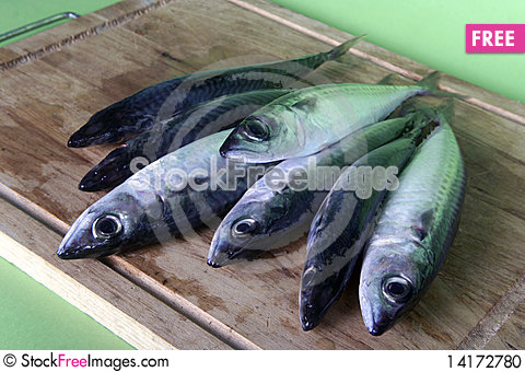 Free Fresh Mackerel Fish On Wooden Table Stock Photo - 14172780