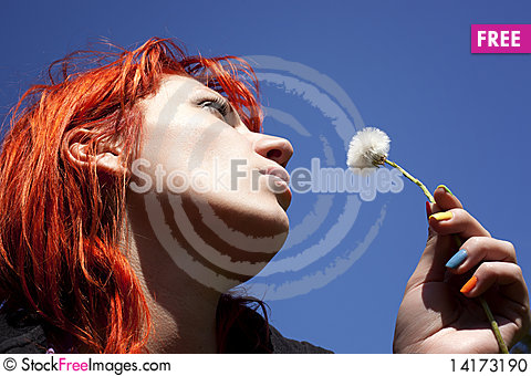 Free Woman With Dandelion Stock Photo - 14173190