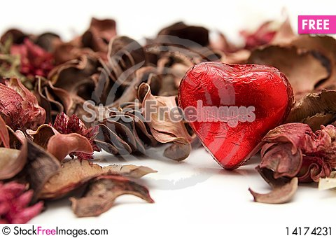 Free Sweet Heart Stock Image - 14174231