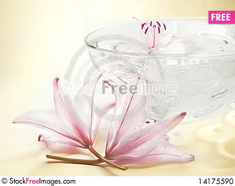Free Water For Spa With Lily Petals Stock Photo - 14175590