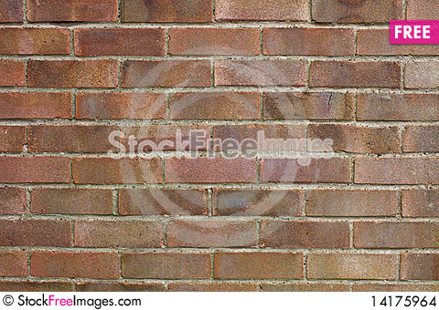 Free Brick Wall Texture Stock Images - 14175964