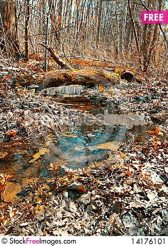Free Wood Creek Stock Image - 14176101