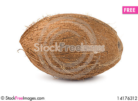 Free Coconut Stock Photography - 14176312