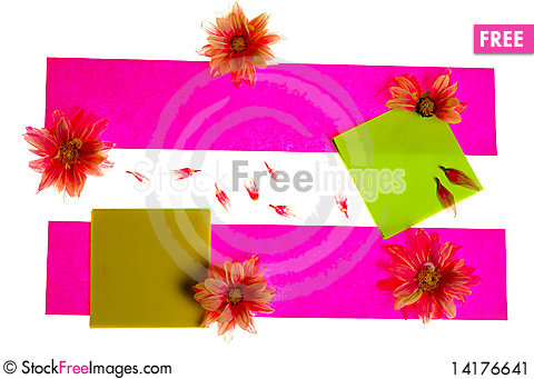 Free Stickers With Flowers Stock Image - 14176641