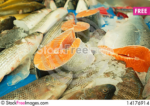 Free Fresh Fish For Sale Stock Images - 14176914