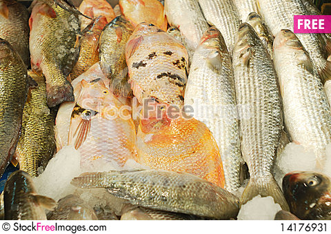 Free Fresh Fish For Sale Stock Image - 14176931