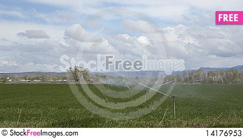 Free Agriculture Watering Stock Photos - 14176953