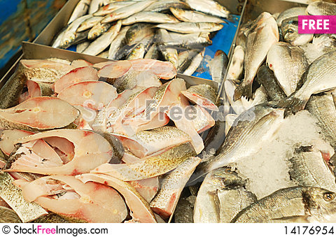 Free Fresh Fish For Sale Stock Images - 14176954