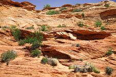Free Classic Nature Of America - Mt In Glen Canyon Royalty Free Stock Image - 14170316