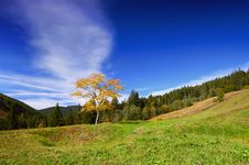 Mountain Landscape In The End Of Summer Royalty Free Stock Photography