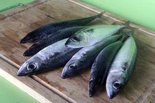 Free Fresh Mackerel Fish On Wooden Table Stock Photo - 14172780