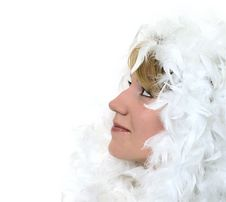 Free Profile Portrait Of A Girl With White Feathers Stock Image - 14177001