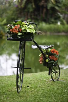 Free Flower Bicycle Royalty Free Stock Photos - 14177268