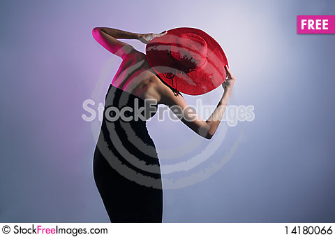 Free Leaning Stylish Lady Wearing Dress And Hat Royalty Free Stock Image - 14180066