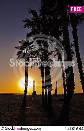 Free Sunset At SantaMonica Beach Stock Images - 14181644
