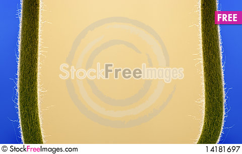 Free Plant Frame Royalty Free Stock Photography - 14181697