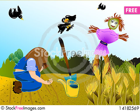 Free Organic Garden Royalty Free Stock Images - 14182569