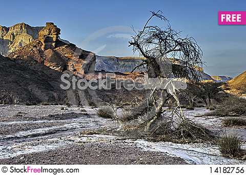 Free Snags Of Timna Park Royalty Free Stock Image - 14182756