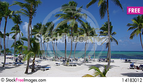 Free Caribbean Beach Stock Photography - 14183012
